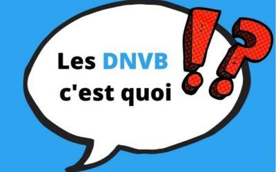 Focus sur les DNVB (promis, ce n'est pas une insulte !)
